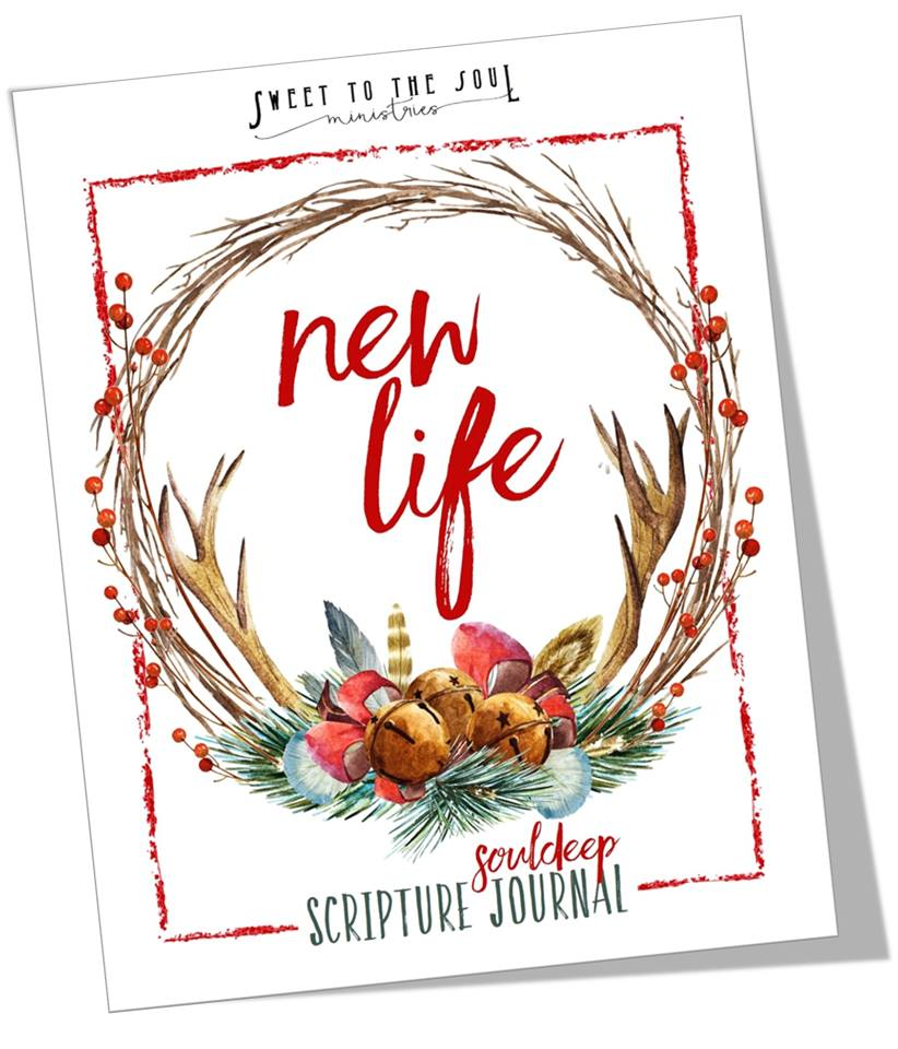 Sweet to the Soul Ministries Scripture Journal http://bit.ly/SoulDeepJanJB